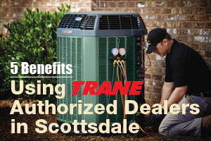 Trane authorized dealers