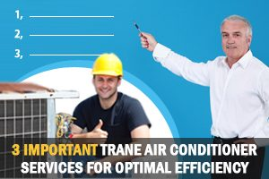Trane Air Conditioner Services for Optimal Effeciency